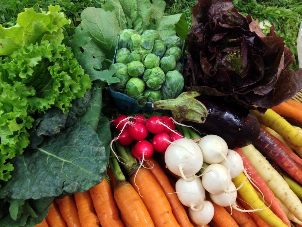 organic veggies local2