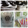 An Eco-Friendly Way to Plant Seeds