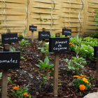 Garden Mapping: Crop Rotation, DIY Pallet Fence & Garden Markers