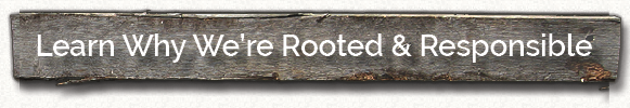 learn-why-we're-rooted-and-responsible