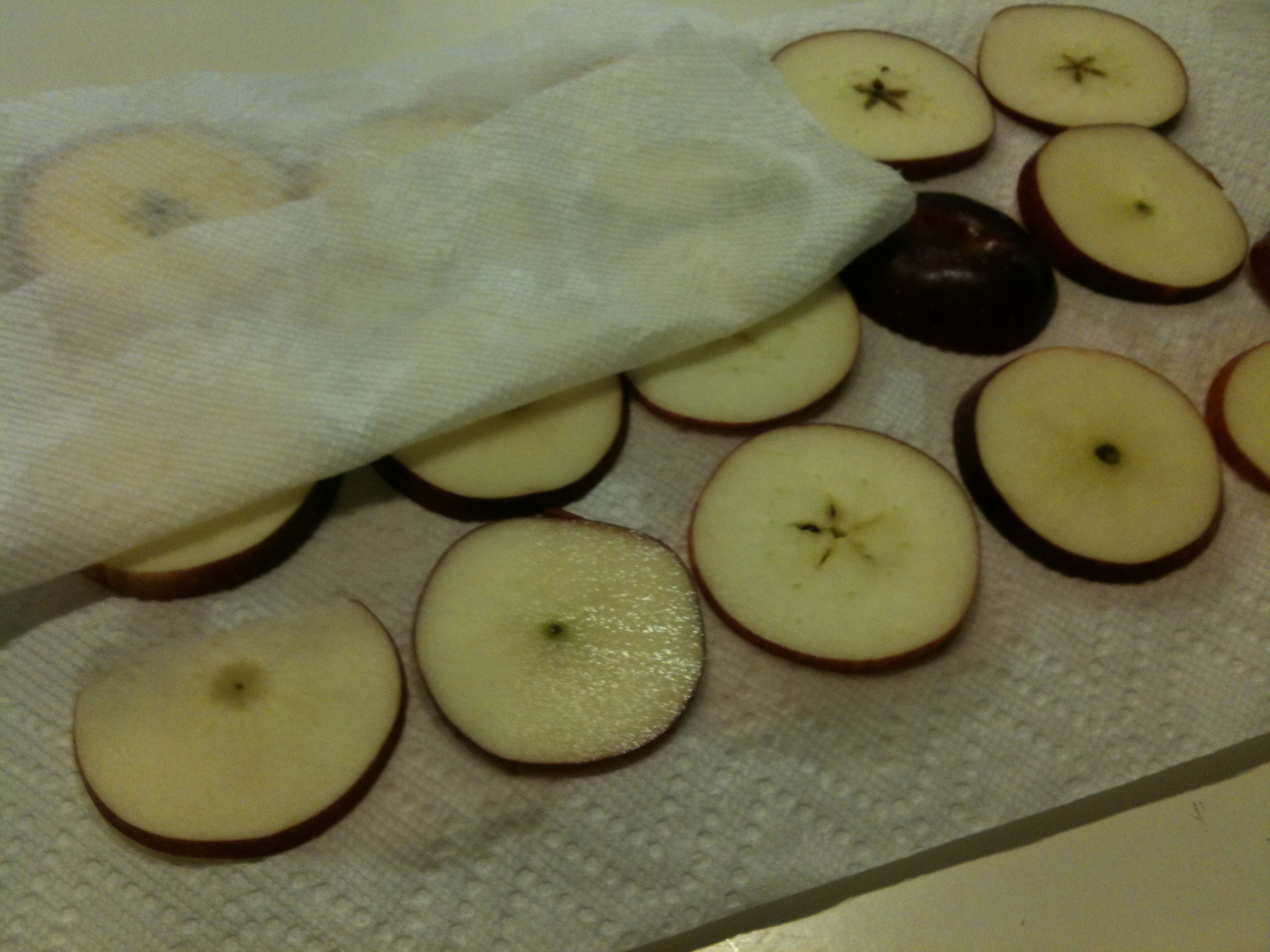 place fruit on a paper towel and pat dry with another paper towel