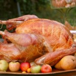 In the Time of Turkeys This November