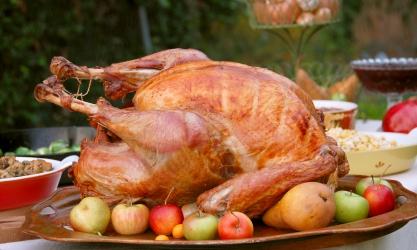 Turkey iStock_000004273187XSmall