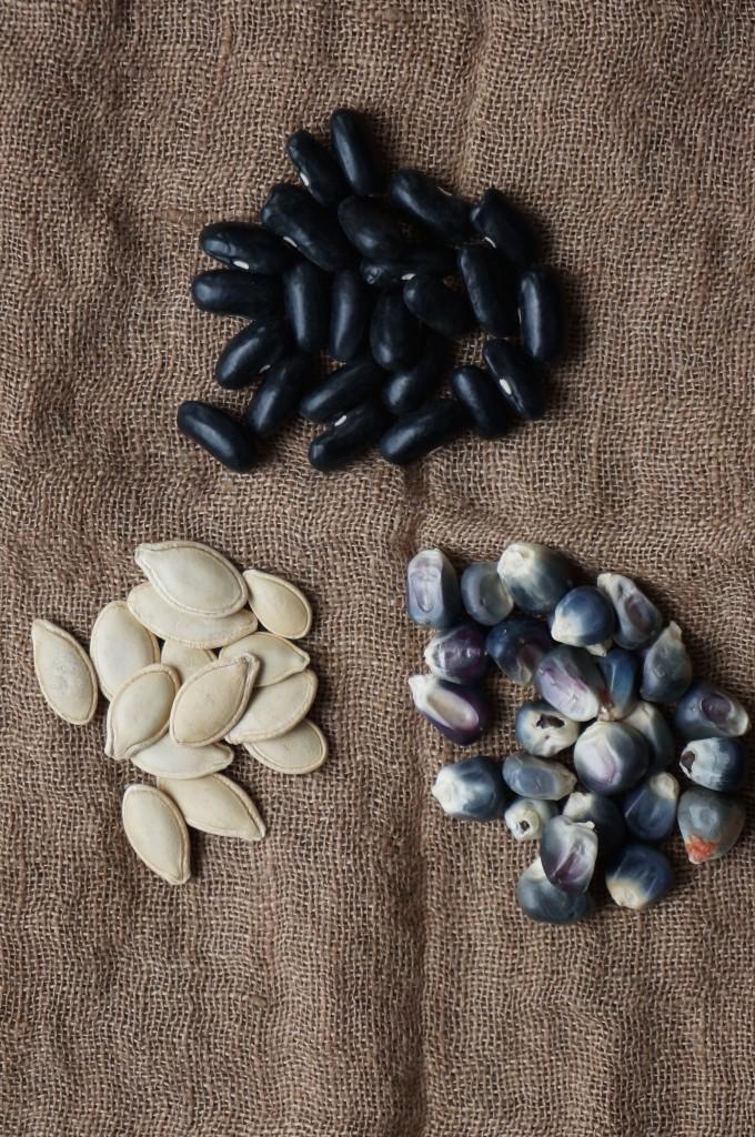 Three Sister Seeds