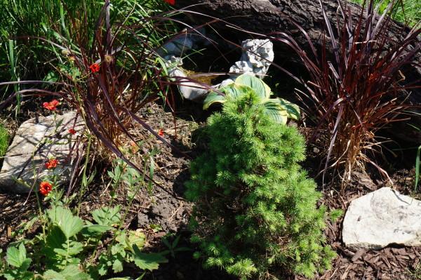Pop up rock garden along the sidewalk's edge