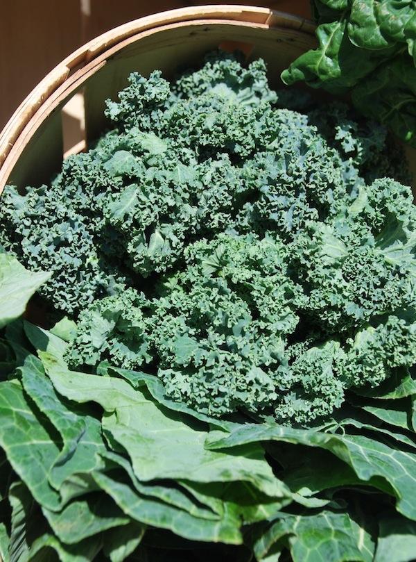 Kale & Greens
