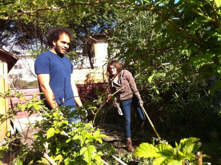 Vegetable-Garden-Prep