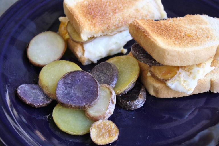 egg-sandwiches